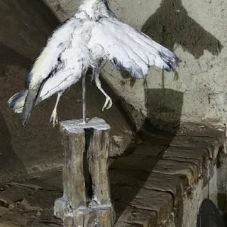 o.t., aus der serie 'bestandsaufnahme', 2021, holz, eisen, mumifizierte krähe, pigment, 49,5 x 16 x 61,5 cm