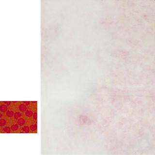 aus der serie 'übergänge', o.t., öl, pigment auf vorhangstoff, 50x60 cm und 240x180 cm