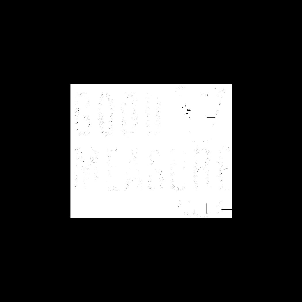 GoodMeasure.png
