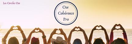 Mail_header_Ose_Cohérence_Pro.png