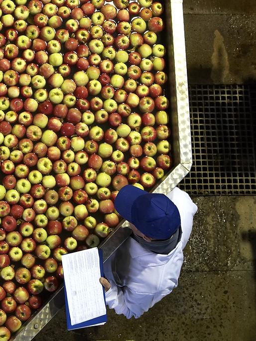 Those Apples.jpg