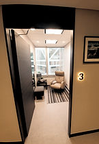 The Central Surgery VIP suite