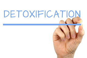 detoxification pic for website.jpg