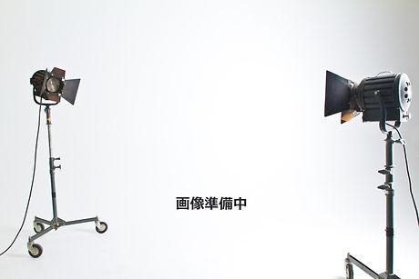 Camera%20Lights_edited.jpg