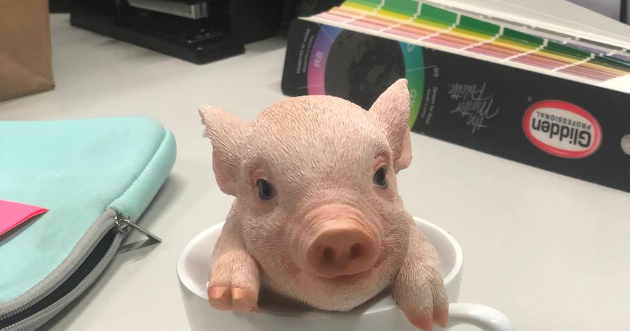Piggy Tea Cup <3