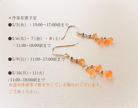 DSC_1794 - コピー (2).JPG
