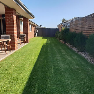 Lawn Mowing 4.jpg