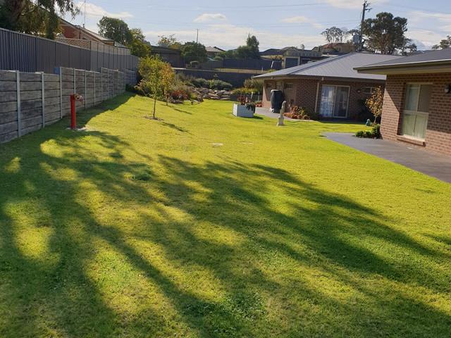 Lawn Mowing 2.jpg