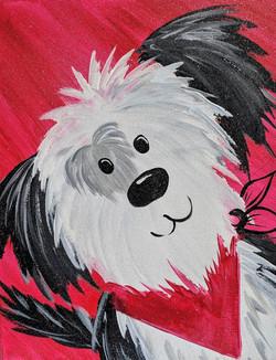 Shaggy Puppy Love