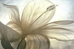 Level 2 Transclucent Flower