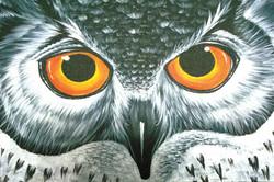 Level 2 Owl