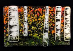 Birch Trees3