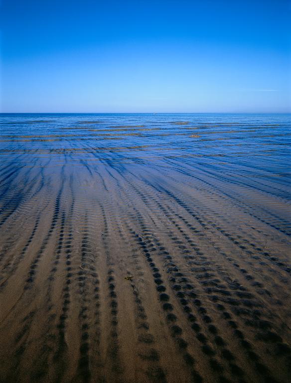 Coastal.