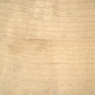 Regular Maple