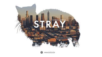 Stray Film Poster.jpg