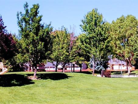 Eagle & McMillan Neighborhoods