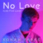 no love single cover.jpg