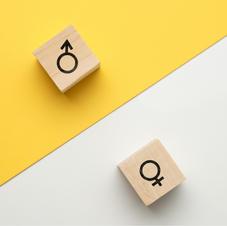 Egalité femme - homme