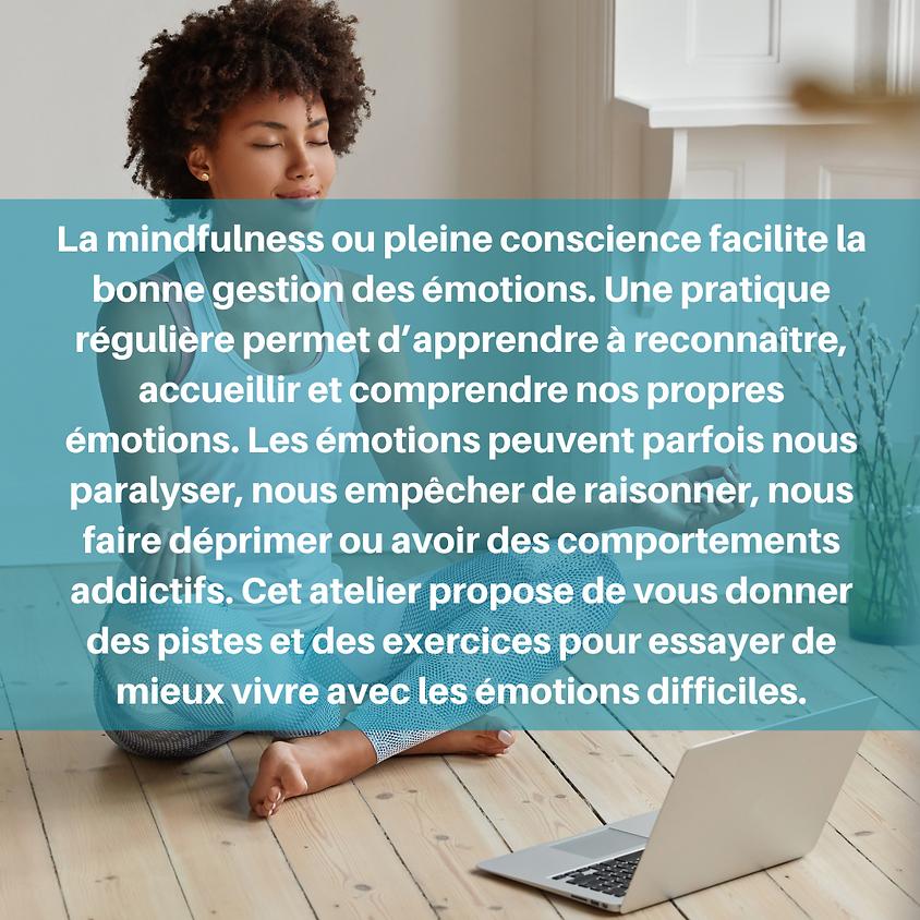 WEBINAR - Comment gérer ses émotions grâce à la méditation pleine conscience ? - Jeudi 26 novembre - 13h à 14h