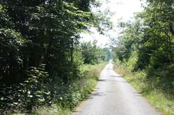 veien ut til Laukhamar