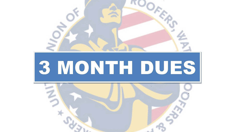3 months dues