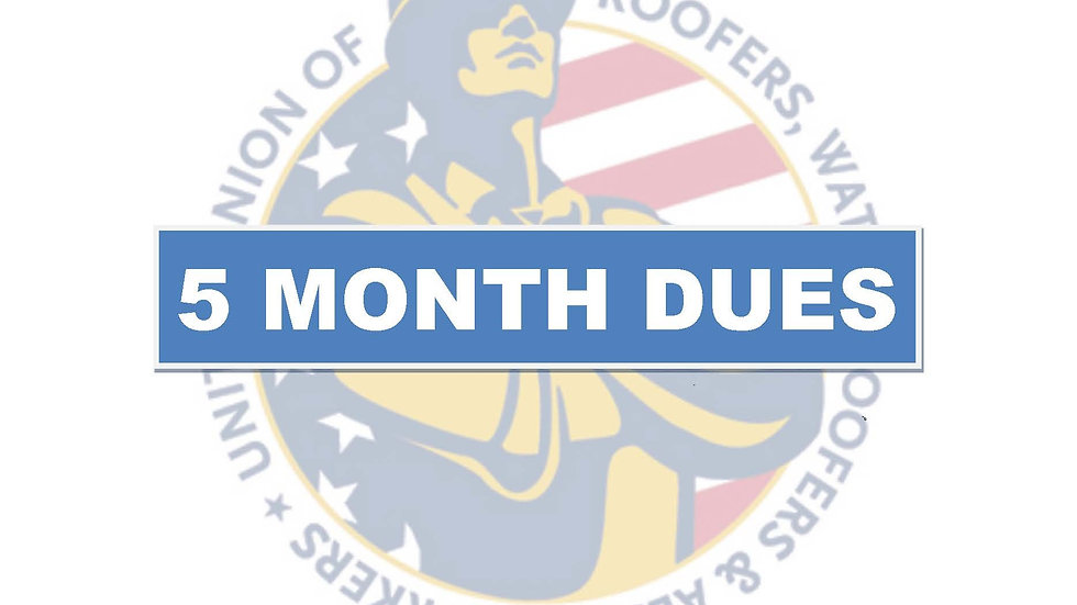 5 months dues