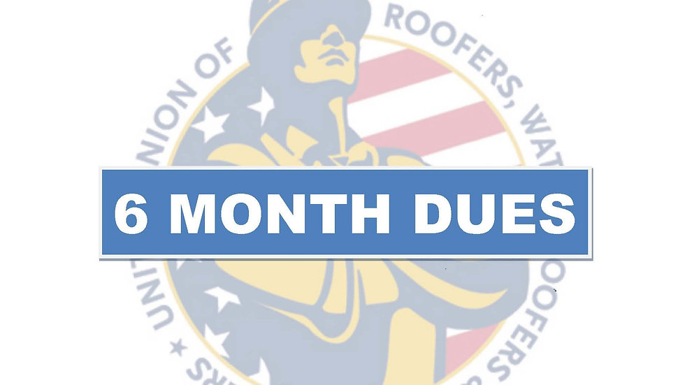 6 months dues