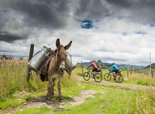MTB Cycling in Bogota: Short rides