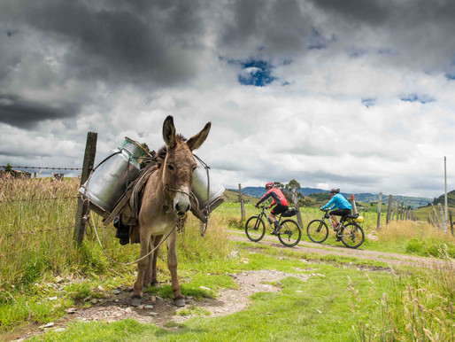 MTB Cycling in Bogota: Short rides