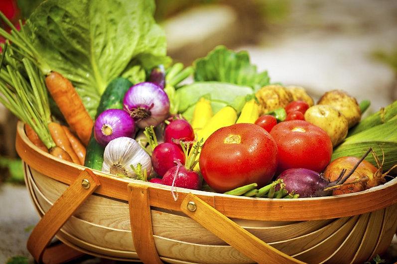 1200-84045785-basket-with-vegetables.jpg