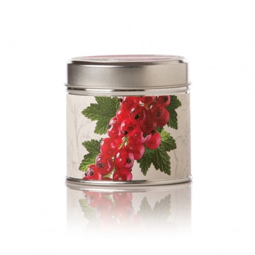 Red Currant & Cranberry Soy Candle