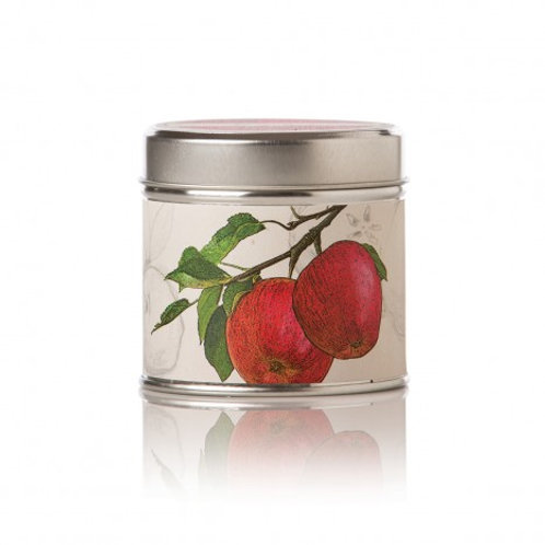 Spicy Apple Soy Candle