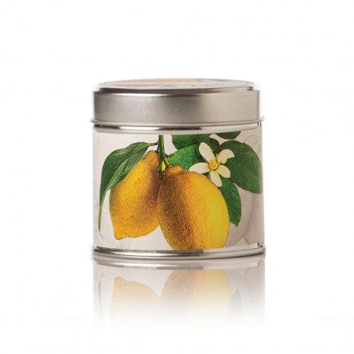Lemon & Lychee Soy Candle