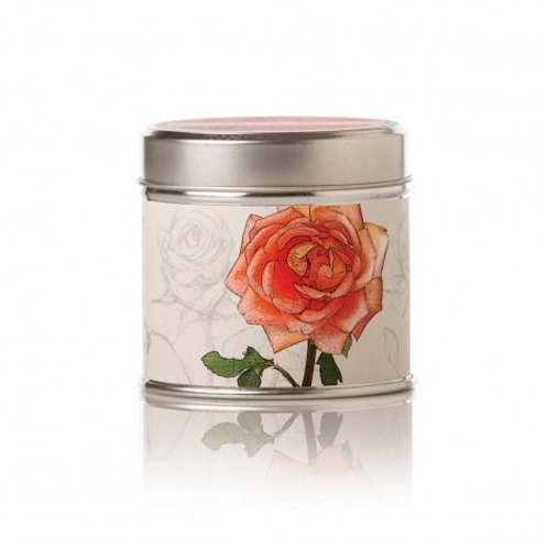 Apricot & Rose Soy Candle