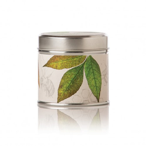 Honey Tobacco Soy Candle