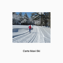 Maxi-ski.png