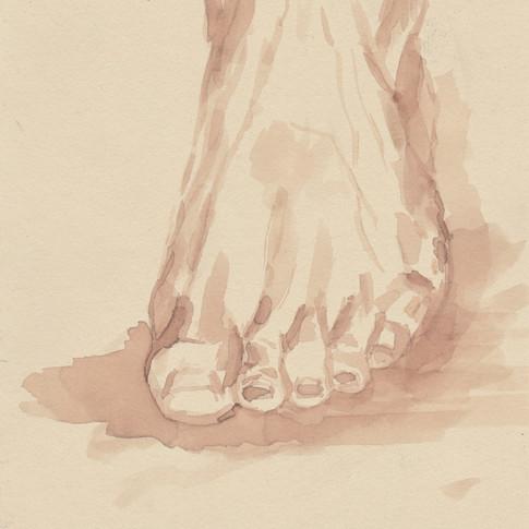 Foot Study in Wine