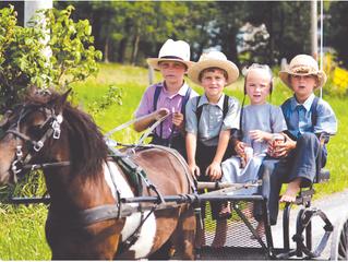 아미쉬(Amish)들에게서 배우는 자녀 교육