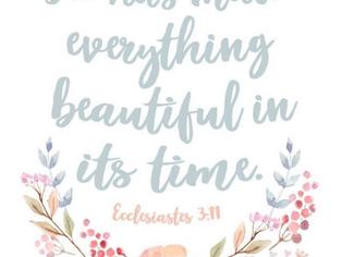 모든 때가 아름답습니다