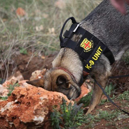 Canine Legal Updates-Central Alabama Training