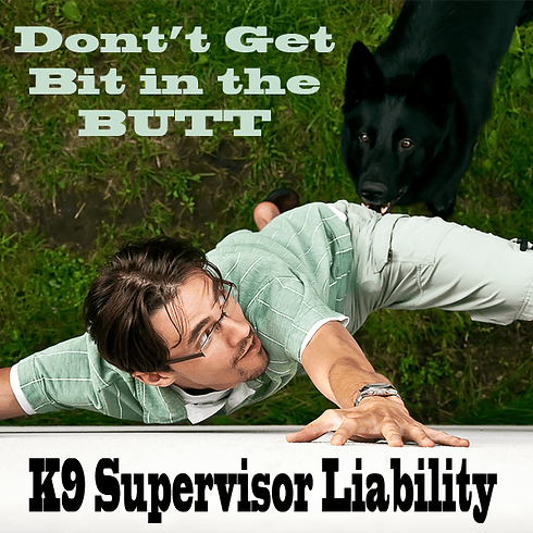 Rockford, Illinois: 1-day Seminar:  Administrators & Supervisors Canine Legal Updates & Opinions