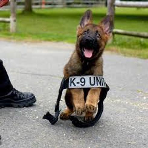 Oxford, NC:  2-day Canine Legal Updates Seminar
