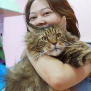 キャットシッター、ペットシッター、猫専門、留守番、東京、墨田
