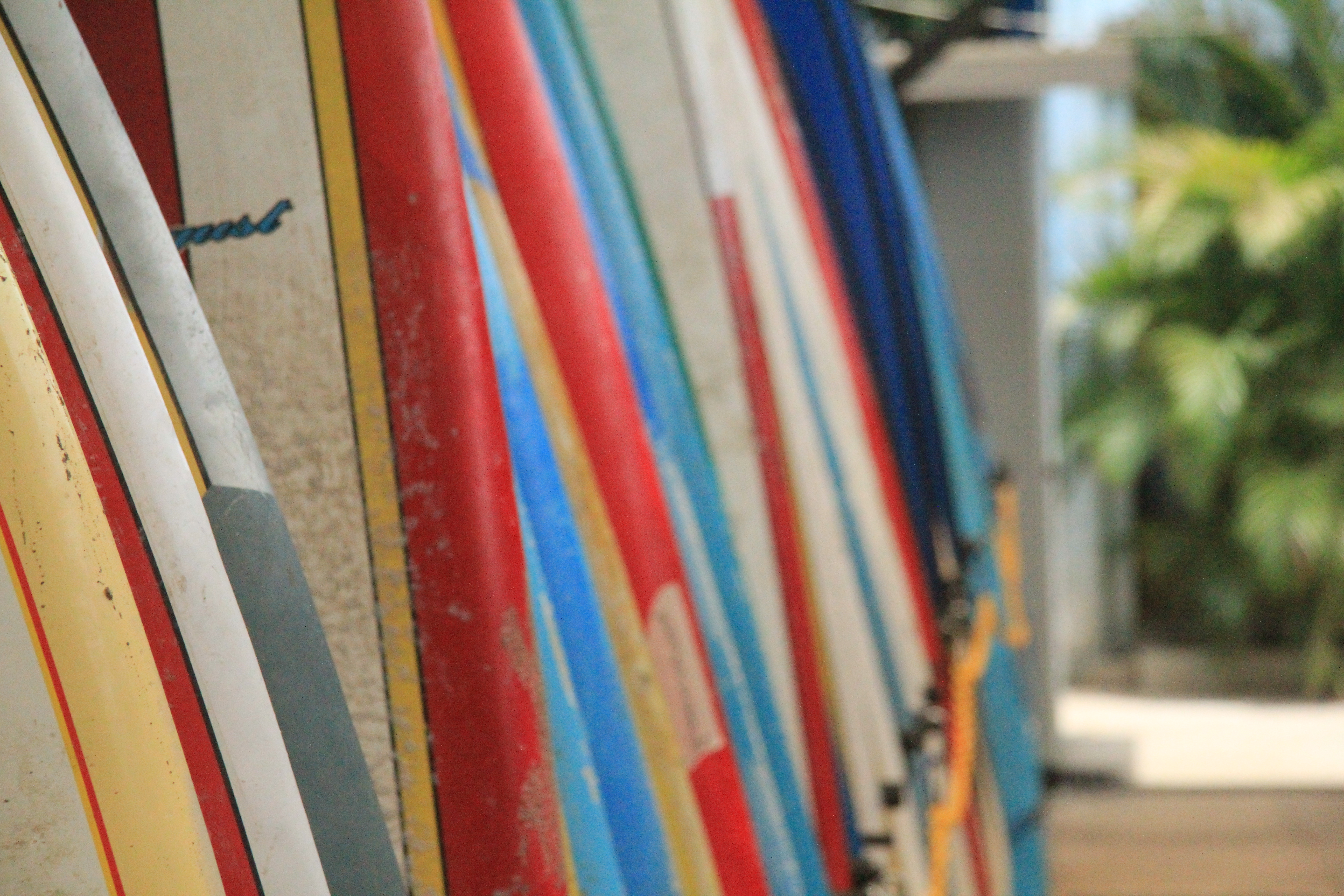 Blue Trailz Tamarindo Board Rental