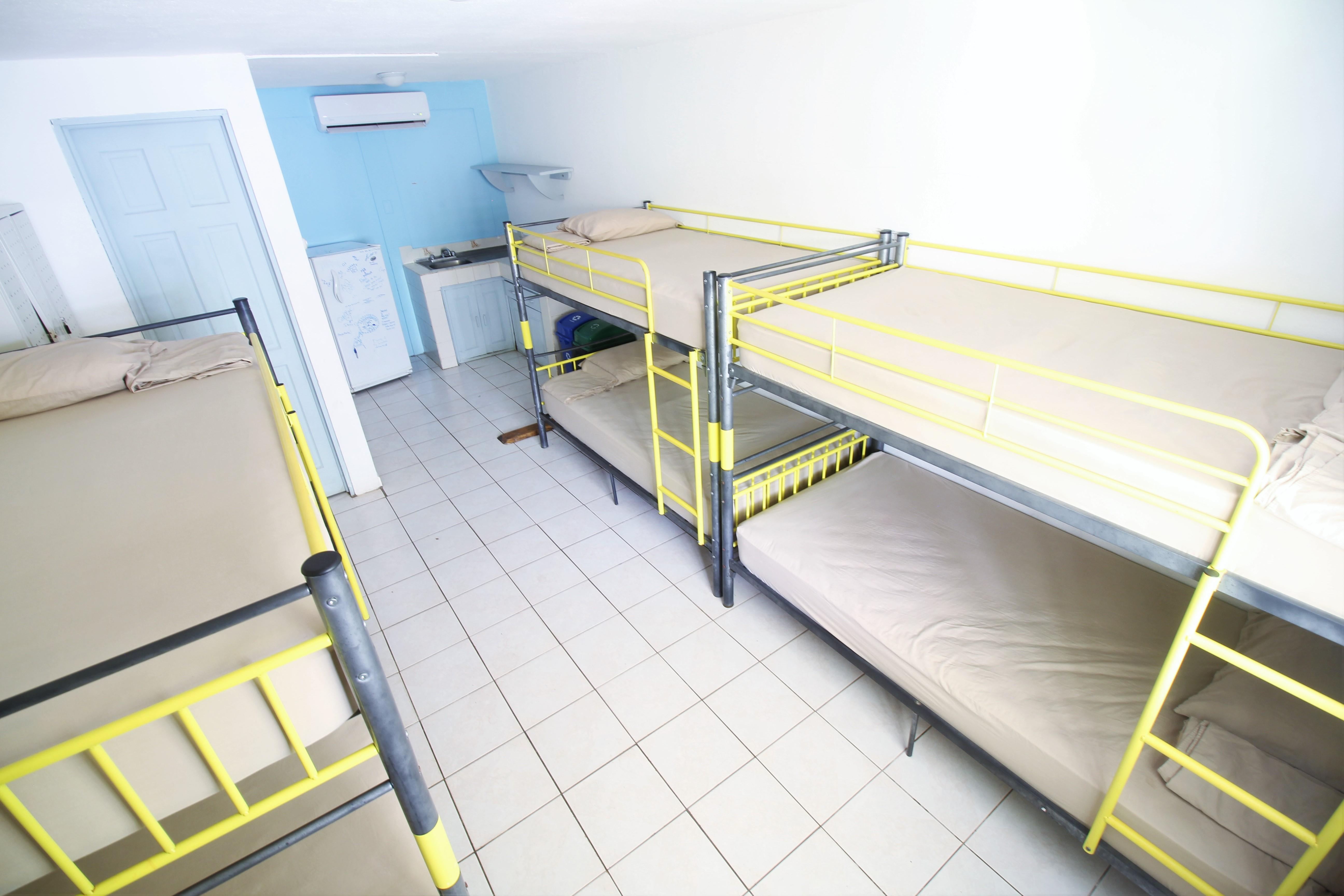 Blue Trailz Tamarindo Hostel Dorm