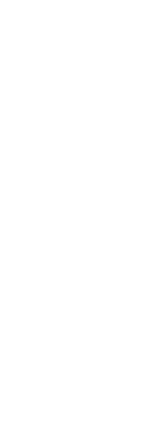 leaves-6_edited.png
