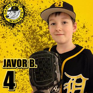 Javor B.