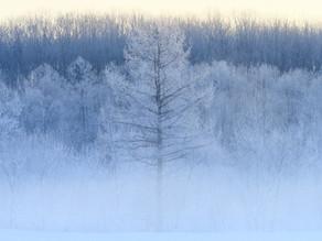 【季節つぶやき事典】第17回《大雪》