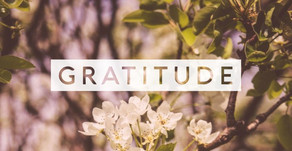 How Practicing Gratitude Each Day Changes Your Life