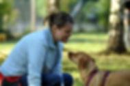 Über Hundetraining mit wedel wedel zum entspannten Mensch-Hund-Team